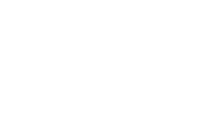 consultores-b.png